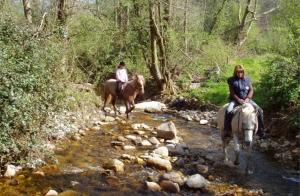 Ruta a caballo con menú