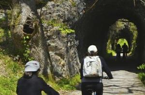 Alquiler de bicis en la Senda del Oso