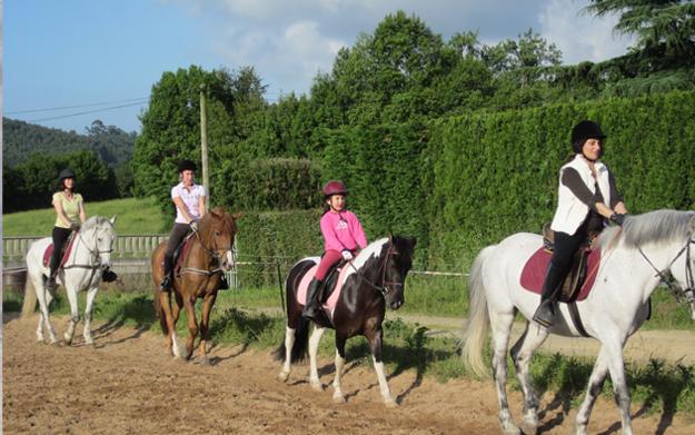 recogido equitación